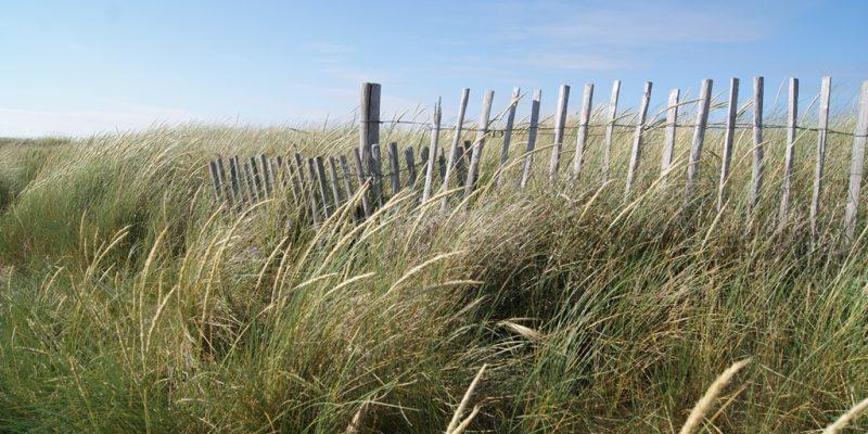 trois plages de sable fin Erdeven