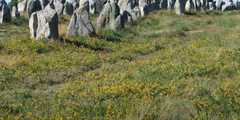 Le plus grand site mégalithique au monde